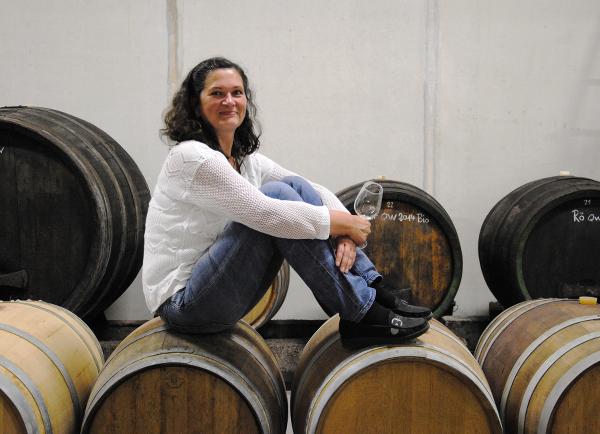 Weinfässer Biowein Hörmann Kellerei